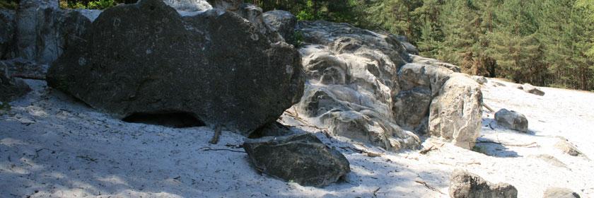 Felsen in der Buckschen Schweiz