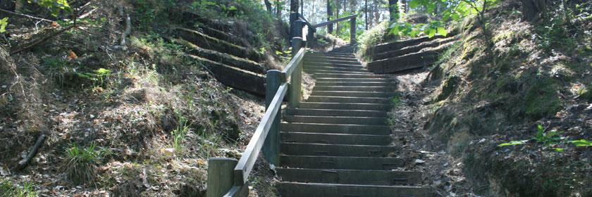 Treppe in der Buckschen Schweiz