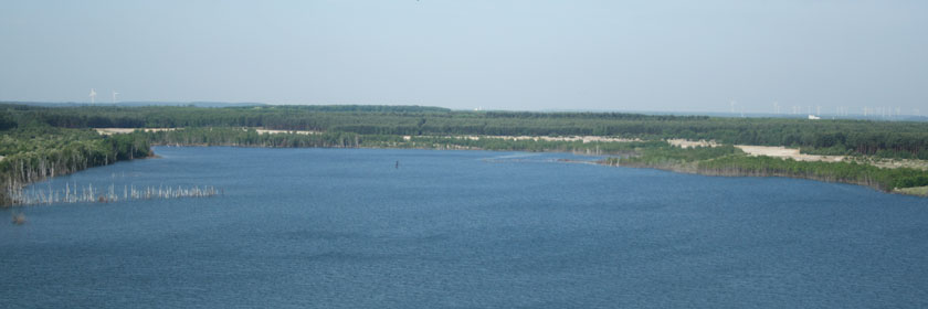 Sedlitzer See
