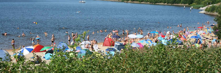 Senftenberger See im Sommer