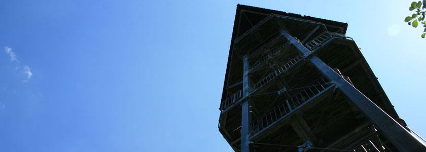 Treppentraining Bucksche Schweiz